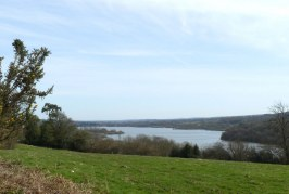 Weir Wood Reservoir Nature Reserve