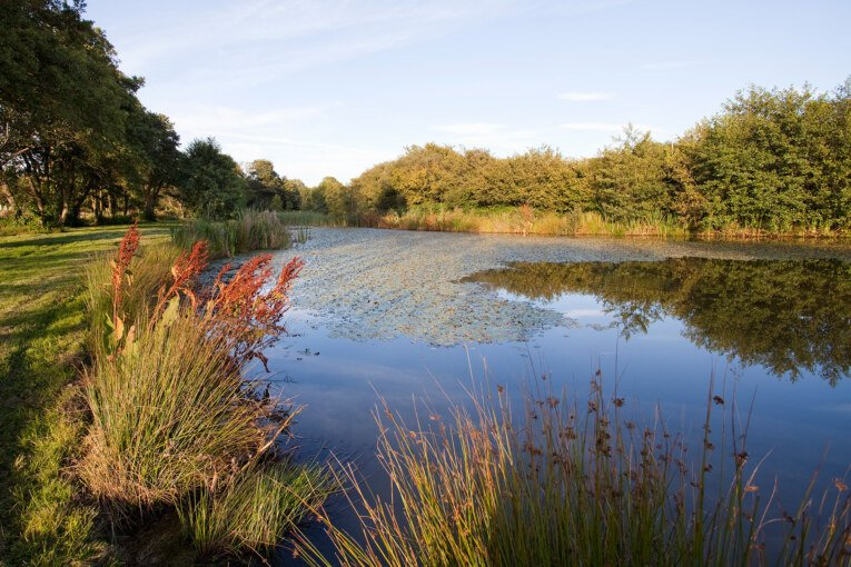 Calling all budding photographers to capture the secrets of the Kingscote Valley
