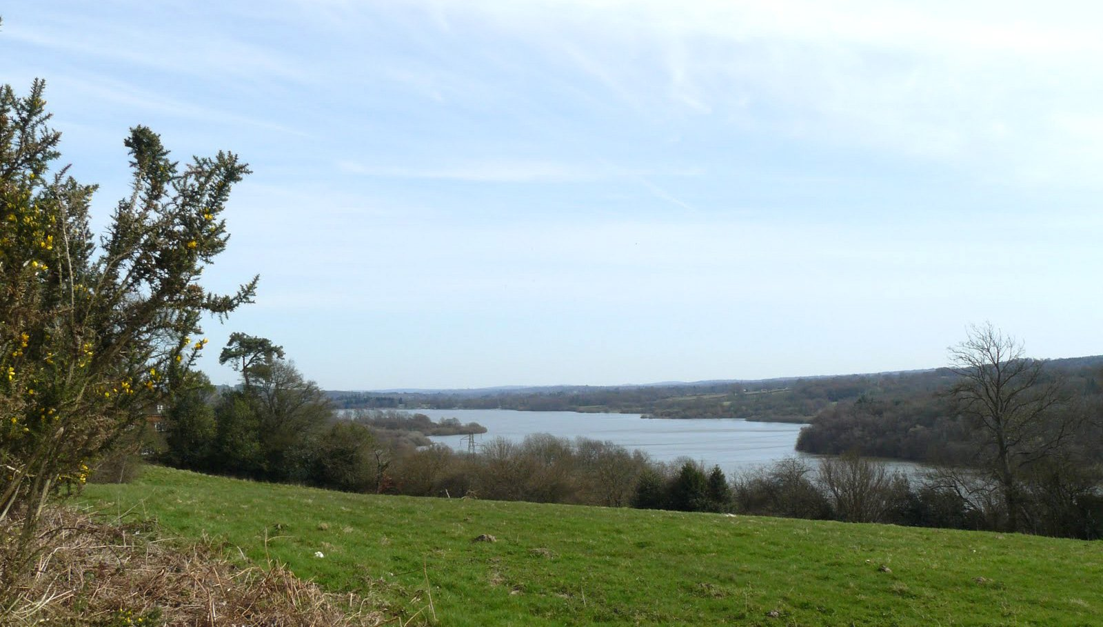 - Weir Wood Reservoir Nature Reserve