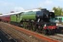 Flying Scotsman visit. Bluebell Railway's gala tickets on sale.