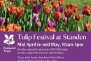 Tulip festival at Standen National Trust