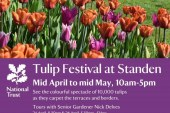 Tulip festival at Standen National Trust