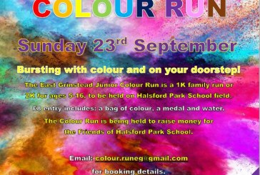 Halsford Park School: Junior Colour Run