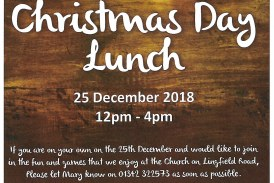 Alone at Christmas; Christmas Day Lunch