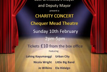 Concert raising funds for Mayor's Charities.