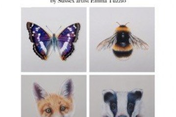 Precious Earth: An exhibition of British wildlife paintings by Emma Tuzzio